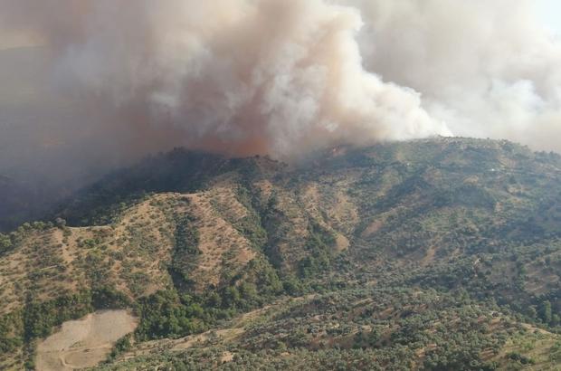 Yangında 140 hektar zirai alan zarar gördü Söndürme çalışmaları devam ediyor