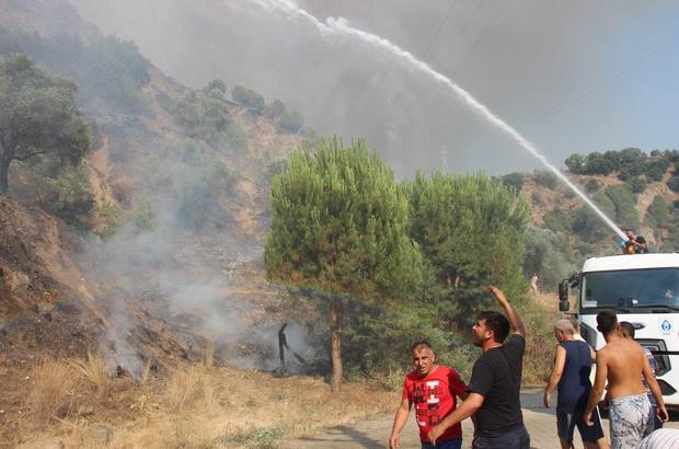 Aydın'daki yangın kontrol altına alındı, soğutma çalışmaları devam ediyor