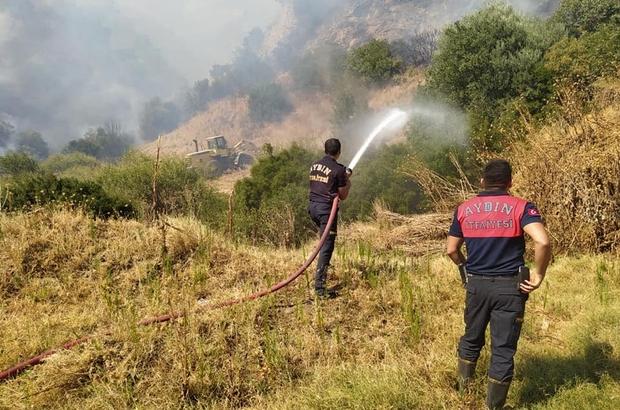 Aydın'daki yangın tekrar alevlendi