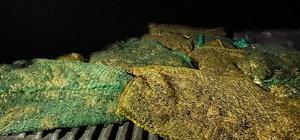 İdil'de kaçak kurbağa toplayanlara 737 bin lira ceza