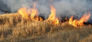 Yozgat'ta anız yakan 6 çiftçiye 4 bin 453 lira ceza kesildi