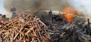 Yol kenarına atılan sigara izmariti 10 ton odunu küle çevirdi Karayoluna atıldığı iddia edilen sigara izmariti önce kuru otları ardından odun deposunu yaktı