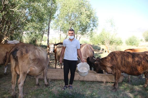 Varto'da genç çiftçi, kiraladığı ahır satılınca hayvanları ile birlikte dışarıda kaldı
