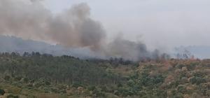 Yangın 15 kilometre uzunluğunda alanda etkili oluyor, helikopter müdahalesi başladı