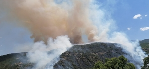Elazığ'da orman yangını Söndürme çalışmaları sürüyor