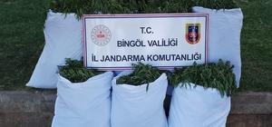 Bingöl'de 176 kilogram kubar esrar ele geçirildi