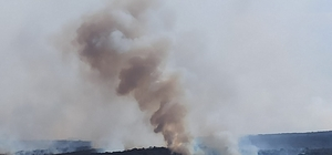 Bulgaristan'daki orman yangını katlanarak büyüyor