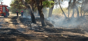 Keşan Kaymakamlığı'ndan orman yangınlarına karşı acil önlem kararları