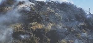 Kars'ta ot yangını! 10 ton ot yanarak kül oldu