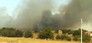 Sakarya'da ormanlık alanda çıkan yangında dumanlar gökyüzünü kapladı Çevredeki evler boşaltılırken, yangına müdahale sürüyor Yangın söndürme helikopteri ile birlikte çok sayıda ekip alevleri kontrol altına almaya çalışıyor