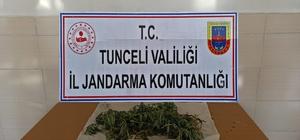 Tunceli'de narkotik operasyonu: 1 gözaltı