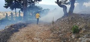 Günyazı Köyü'nde orman yangını