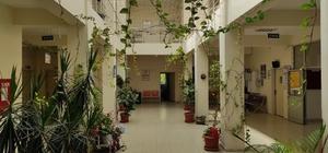 Çalışanların yeşil sevgisi sağlık ocağını botanik bahçeye çevirdi