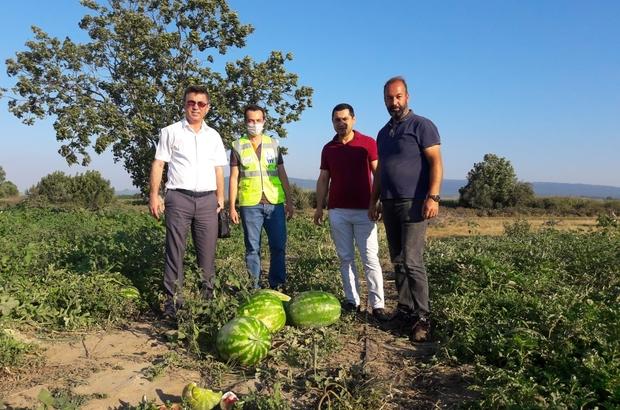 Mustafakemalpaşalı çiftçinin yüzü yeni gelir kaynaklarıyla gülecek