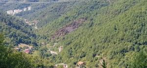 Evde çıkan yangın ormana sıçradı 1 dönümlük alan kül oldu