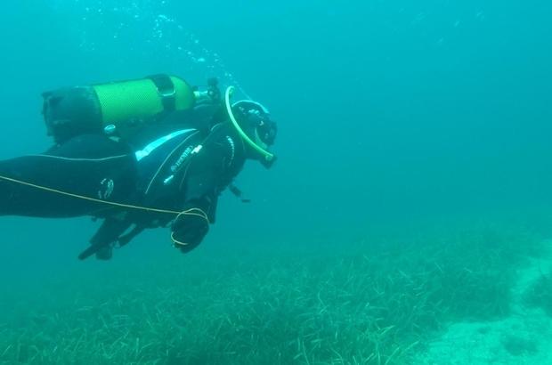 4 kişinin öldüğü tekne faciası sonrası kaybolmuştu, minik Sarp bulunamadı Foça'da 7 yaşındaki Sarp'ı arama çalışmalarına ara verildi