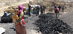 (Özel) Kavurucu sıcakta kan ter içinde ekmek mücadelesi Mangal kömürü üretmek için gece gündüz mesai yapıyorlar