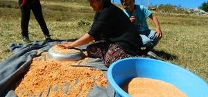 Posof'ta kış hazırlıkları başladı Ardahanlı kadınlar kış mevsimi öncesi tarhana yapmaya başladı