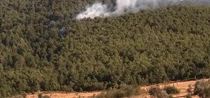 Ormanlık alanda çıkan yangın büyümeden söndürüldü