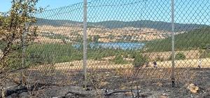 Eflani'de çıkan yangın ormana sıçramadan söndürüldü