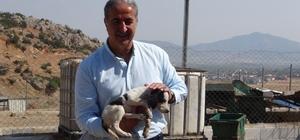Genç Yüksel'den Hayvan barınağı'na ziyaret