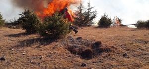 Uzunyurt Köyü'nde orman yangını