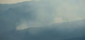 Suriye sınırının sıfır noktasında orman yangını Sınırı aşan yangın söndürüldü