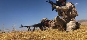 Mardin'de terör örgütü işbirlikçilerine şafak operasyonu