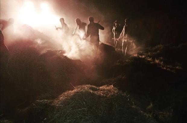 Saray'da 4 bin 300 bağ ot yandı