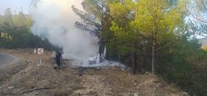 Trafik kazası orman yangınına neden oldu