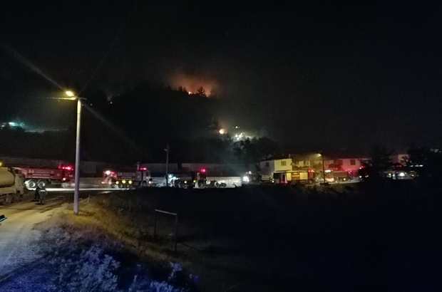 Manisa'da orman yangını: Bir mahalle boşaltılıyor