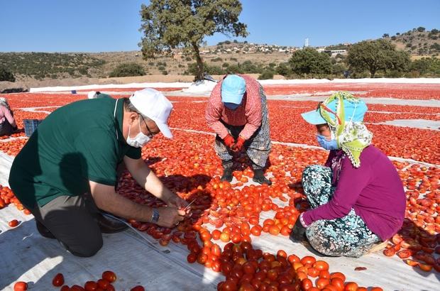 Başkan Çerçi Pelitalan'da üreticileri dinledi