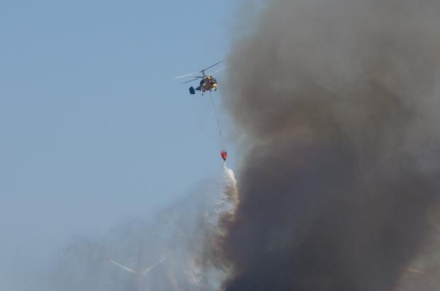 Gelibolu'daki orman yangını devam ediyor Şiddetli poyrazın etkisiyle alevler hızla ilerliyor
