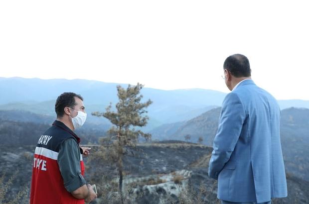 """Savaş: """"3 bin hektarlık alandaki yangında ağaçlarımızı ve birçok canlıyı kaybettik"""" Hatay Büyükşehir Belediye Başkanı Lütfü Savaş, yangın alanında incelemelerde bulundu"""