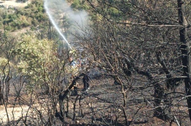 Hatay'da orman yangını Büyükşehir Belediyesi itfaiye ekipleri yangını kontrol altına aldı