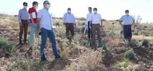 Eğirdir'de Tarımsal Amaçlı Uygulamalı İmar Planı çalışmaları