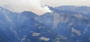 Osmaniye'de orman yangını Yangına havadan ve karadan müdahale ediliyor