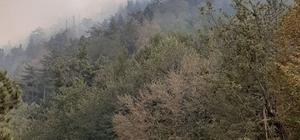 Osmaniye'deki orman yangınını söndürme çalışması devam ediyor