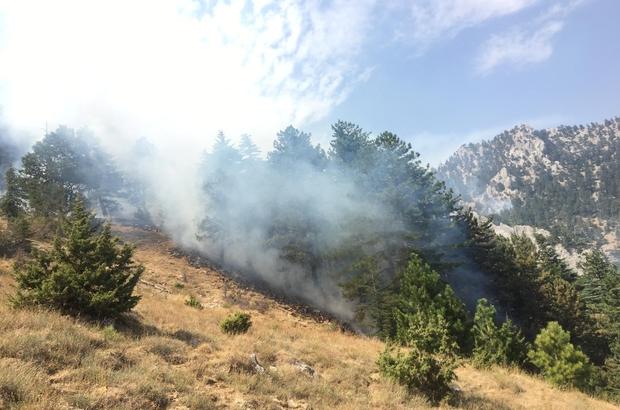 Pozantı'daki orman yangınını söndürme çalışmaları devam ediyor