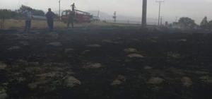 Kum fırtınası ve yağış Günyüzü'nde hasara yol açtı Mezarlıkta yangın çıktı, konteyner devirildi, onlarca ağaç yerinden koptu