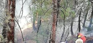 Amanoslar'daki orman yangını kontrol altına alındı