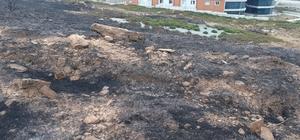 Gökçeada'daki yangın  söndürüldü
