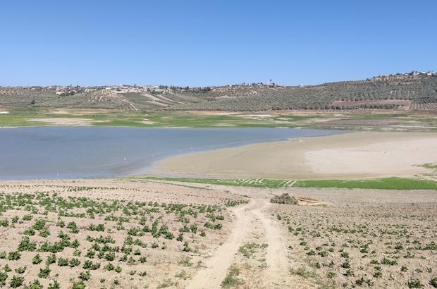 Yarseli Göletinde sular çekildi Göletteki su seviyesi düşse de göçmen kuşlar göletten vazgeçmiyor