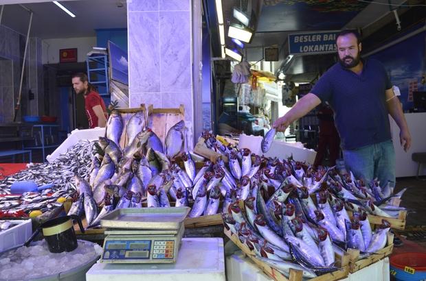 Balıklar bollaşıyor, fiyatlar düşüyor Balıkçılar, tezgahların ucuz balıklarla daha da dolacağı, talebin de artacağından emin Sezon ilerledikçe balık çeşitleri de, satışlar da artıyor