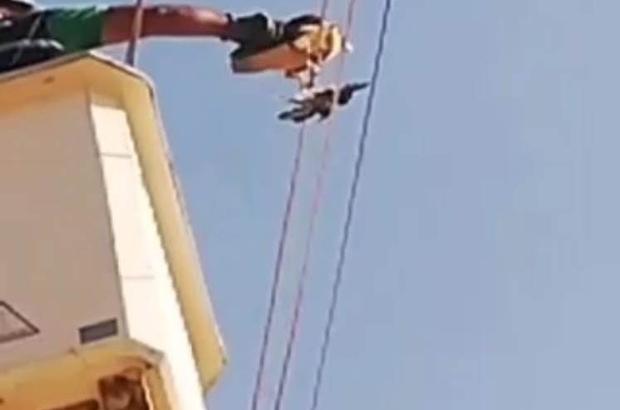 Ayağına kuş ölüsü bağlanan Şahin, mahsur kaldığı yerden kurtarıldı