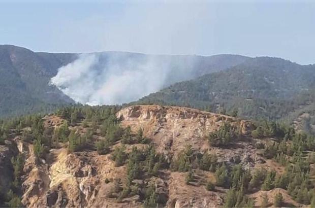 Mihalgazi'deki orman yangını için Ankara'dan helikopter geliyor