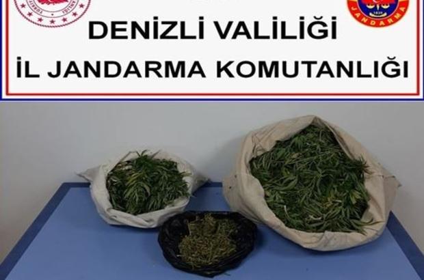 Arazide uyuşturucu kurutmaya çalışırken jandarmaya yakalandılar Arazide 11 kilogram uyuşturucu kurutan 2 şahıs yakalandı