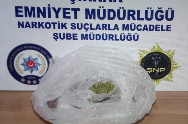 Şırnak'ta kaçakçılık operasyonları: 28 gözaltı