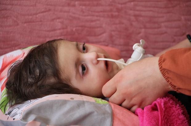 Efe bebeğin tedavisi için 2.2  milyon dolar gerekli Elazığ'da 3 aylıkken hastalığına teşhis konulan şimdi bir yaşına girecek olan SMA TiP 1 hastası Yiğit Efe bebeğin iyileşme umudunun  ABD'de uygulanan 2 milyon 200 bin dolar olan gen tedavisi olduğu belirtildi Yiğit Efe bebeğin annesi, 11 aylık süre içerisinde bu ilacın uygulanmasına başlanmasıyla, çocuklarının kurtulabileceğini belirterek, herkesin sesini duymasını istedi Efe için süre kısalırken, Çeçen ailesi, 2 milyon 200 bin dolara mal olan tedavinin yapılabilmesi için global bağış sitesi olan 'GoFundMe' üzerinden yardım kampanyası başlattı