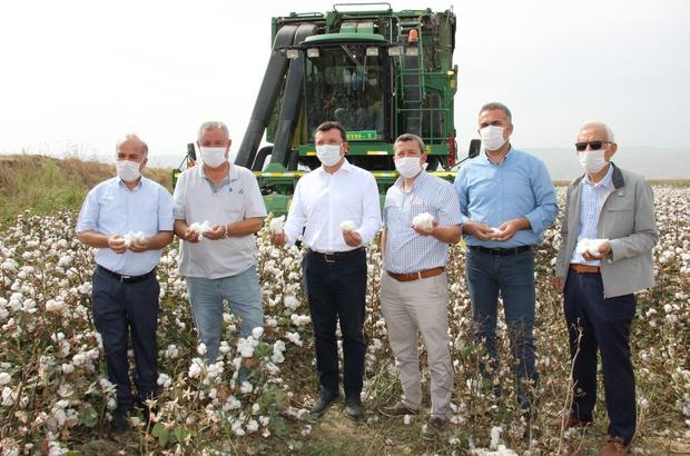 """Efeler Ziraat Odası Başkanı Kendirlioğlu, """"Çiftçinin bayramı hasattır"""" Aydın'da pamuk hasadı başladı"""